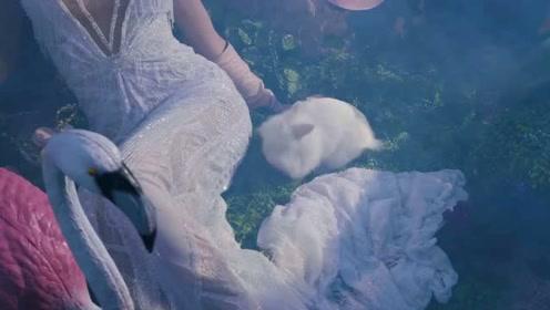 Galia Lahav 2019婚纱广告   爱丽丝梦游仙境美得窒息