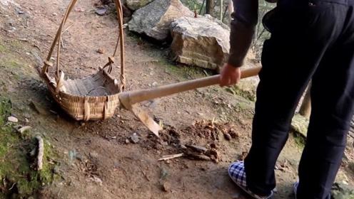 农民挖笋挖出残破文物贱卖,专家花数百万回购,如今成无价之宝