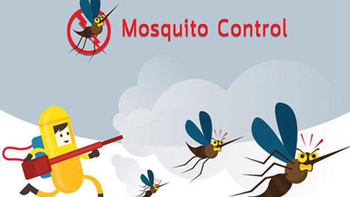科普行动派-03:预防蚊虫骚扰,你的方法真的有效吗?