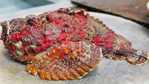 全世界最毒的鱼,科学家亲自测试,看完让人背后一凉