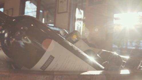 去昆士兰最大酒庄,品顶级葡萄酒