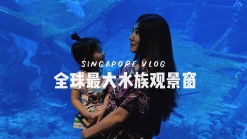 全球最大水族观景窗,与五万条鱼儿共狂欢,新加坡必去的海洋馆