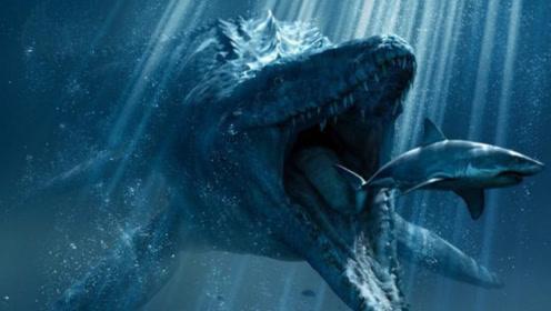 据说海洋王者是巨齿鲨?不,这两种生物可能比它还厉害