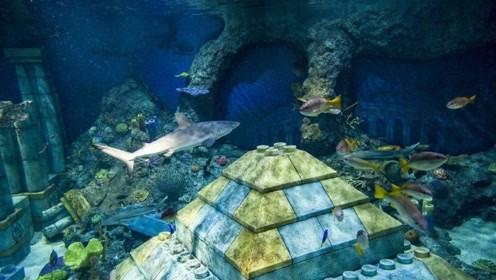 中国的金字塔藏在海底 距今上万年 石墙上还刻有象形文字