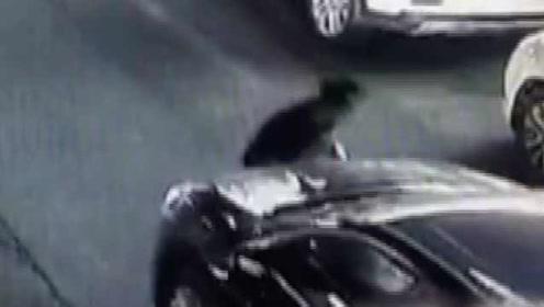 男子抢金项链被追到没力气:撞车倒地,还丢了项链