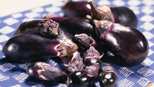 吃了二十多年茄子,现在才知道绿皮茄子与紫皮茄子有何不同