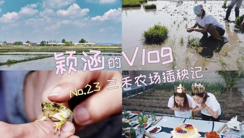 颖涵的VLOG—三禾农场插秧记