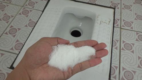 在卫生间里放一把食盐,一年下来能省好几百块,看完一家人都受益