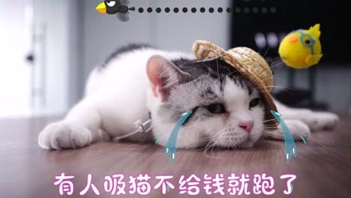 小猫咪走丢之后,碰到怪阿姨!还好小猫咪机智化解!