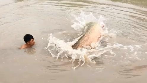 撒网打鱼:大鱼逃跑了,重新来