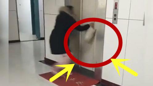 主人进电梯,却将狗狗忘在了外面,下一秒揪心了!
