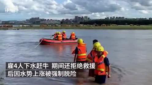 养殖户雇人强行下洪水赶牛,获救后被训诫