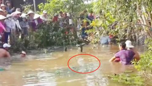 废弃水塘里频传怪声!被上百村民团团围住,里面到底藏了什么?