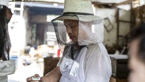 大学生返乡养蜂创业,交通闭塞却成为最大阻碍