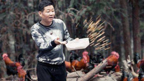 逆袭的一线明星当红明星,为了妻儿转做农民,靠养鸡身家过亿!