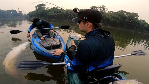 野外河中小鱼竿博大鱼,浮出水面后才是见证奇迹
