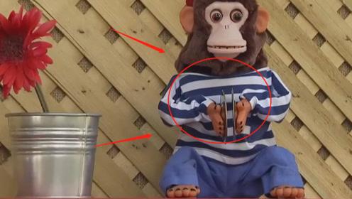 """熊孩子趣味恶搞,玩具猴子自动""""敲锣""""?路人:难道是我幻听了"""
