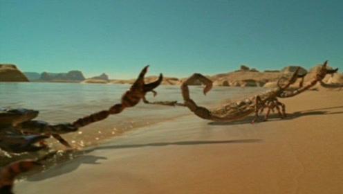曾经的霸主体长体长3米连恐龙都不是对手