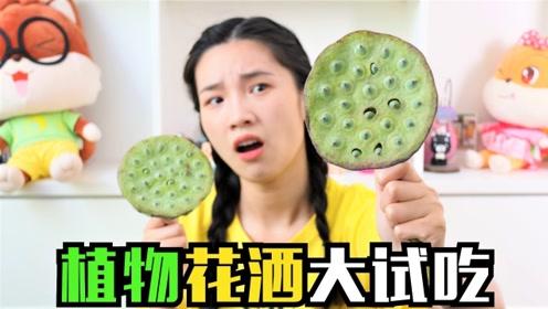 超市5块钱一个的莲蓬,据说有嗑瓜子一样的感觉,真有这么好玩?