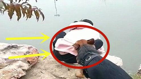 狗狗:不要靠近河边,那里很危险,真是操碎了心啊!