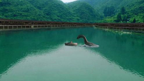三峡坝区现神秘动物,体型硕大在水中游动