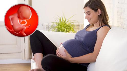 胎儿在妈妈肚子里最害怕这3件事 90%的准妈妈都不知道