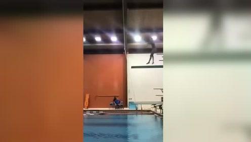 外国跳水冠军