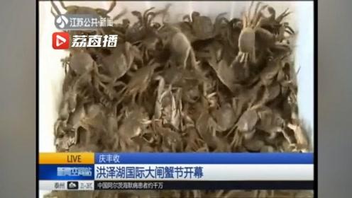 洪泽湖国际大闸蟹节开幕!吃货们,螃蟹来了 螃蟹终于来了