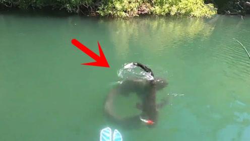 刚钓到一条大鱼,更惊喜的事情还在后面!