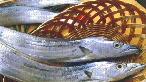 """最有骨气的鱼,被捕就""""自杀"""",没人能在超市见到活的它"""