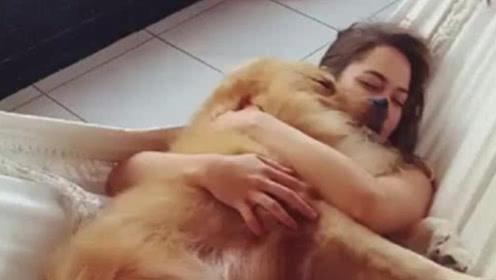 姑娘每天抱着金毛睡觉,感觉身体不适去医院检查,瞬间不淡定了!