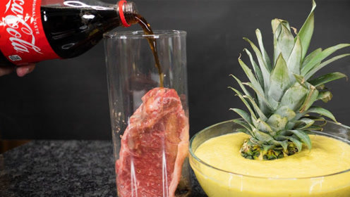 将牛排放入盐酸可乐菠萝汁中会有什么反应,网友:看完终于明白了!