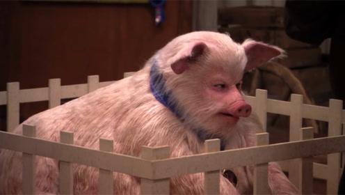 外国男子扮作猪和小朋友讲话,太过逼真,看完憋住千万不要笑!