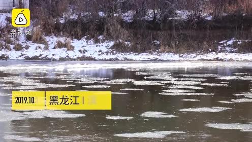 北方被冻得发黑了!黑龙江最低温-15℃,河流提前冰封