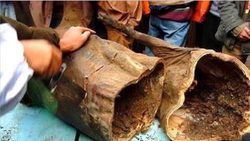 四川有个部落从来不结婚,每家都有臭猪肉,最久的放了30年!