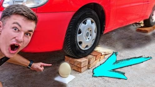 老外用汽车轮胎碾压鸵鸟蛋,这样都不能碾碎?实验结局简直刷新认知观