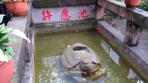 游客往许愿池里扔的钱,最后都去哪儿了?答案你可能想不到!