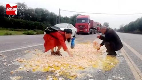 不要命?3000枚鸡蛋散落一地,大爷大妈车流中疯狂捡漏
