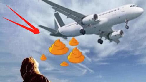 """飞机上的""""粪便""""都排到哪里了?直接往地上扔吗?空姐无奈说出实情!"""