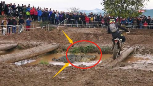 世界最恐怖的摩托车越野赛,一不小心喂鳄鱼,吓得选手掉头就走!