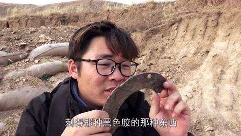拿探测仪到废弃的军事工事探子弹壳,看看小伙探到了什么
