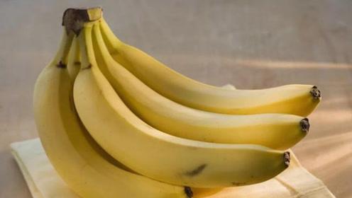 真正的香蕉早已灭绝?那现在的香蕉是什么,真相出乎意料!
