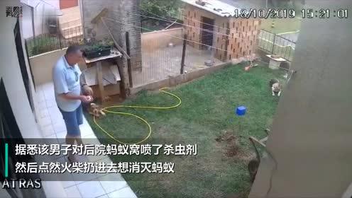 男子往蚂蚁窝扔了根火柴,怎料地面突然爆炸把他吓懵了