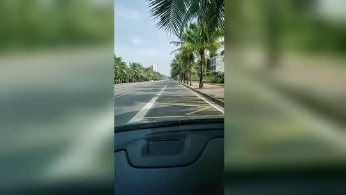 和朋友开车出来散心!路两边的风景真美啊