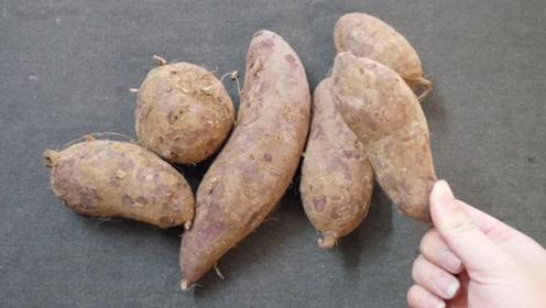 保存红薯有妙招,教您正确方法,越放越甜,一年也不会发霉变烂
