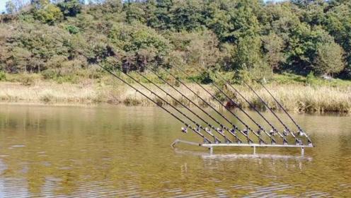 钓鱼:在水中摆放了很多根钓竿,看到鱼上钩了就冲过去