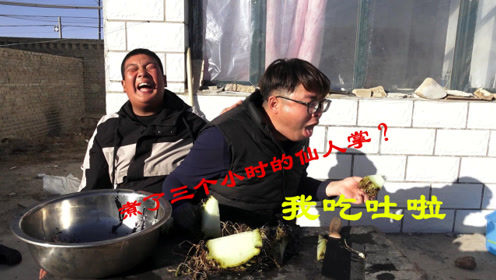 奇葩测试把仙人球放到大锅中煮三个多小时,看我的吃相小胖都乐了