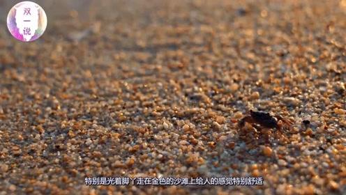 在海边游玩时,为什么不能把自己埋进沙子?学会能保命!