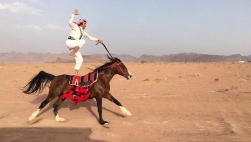 迪拜土豪的马术有多精湛?20秒后震撼才刚刚开始!