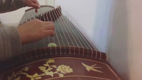 【古筝弹唱】琴师古筝自学入门基础教学课程
